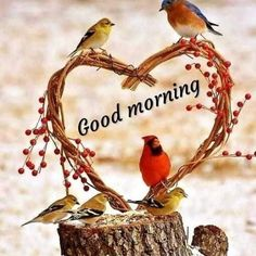 Everyone needs beautiful good morning images. When we wake up in the morning we send beautiful good morning images to our loved ones. Good Morning Happy Sunday, Good Morning Cards, Good Morning Sunshine, Good Morning Gif, Good Morning Picture, Good Morning Messages, Good Morning Greetings, Morning Quotes, Morning Coffee