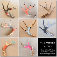 Welcome to deer antlersThe Painted Antler. I paint authentic naturally-shed Texas whitetail deer antlers that we have found on our ranch in West. Deer Skull Art, Deer Skulls, Cow Skull, Painted Deer Antlers, Shed Antlers, Deer Decor, Skull Decor, Antler Art, Deer Antler Crafts