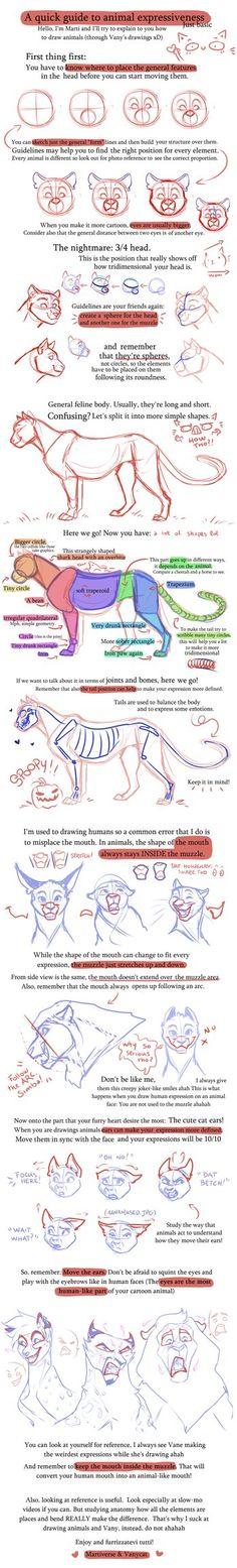 Tips and tricks for feline expressions by VanyCat.deviantart.com on @DeviantArt
