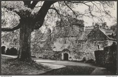 Entrance, Cotehele House, Calstock, Cornwall, c.1950s - National Trust RP Postcard