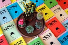 """This is the 1st issue of our fanzine """"these are a few of our favorite things"""". The favorite thing of this issue is """"Cactus"""". Price: 2€Edition of 50 numbered & digital printed copies. The cover unfolds into an A4 poster. Only few remain. If you want to order one, send us an email with the subject """"cactus order"""": few.of.our.favorite.things (at) gmail.com There's a review (in greek) at fanzines.gr"""