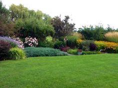 Donna's reclaimed-pasture garden in Washington (8 photos)   Fine Gardening