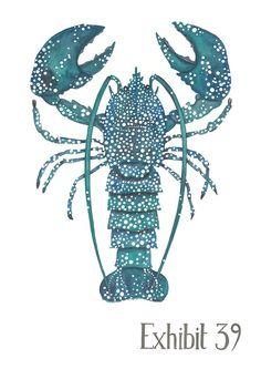 A3 illustrated lobster print limited by stephaniecoleDESIGN, £26.00