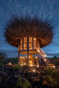 This giant bird's nest is actually a seriously luxurious safari lodge! - This giant bird's nest is actually a VERY luxurious safari lodge where guests can dine under the - Architecture Cool, Natural Architecture, Architecture Quotes, Pavilion Architecture, Sustainable Architecture, Residential Architecture, Contemporary Architecture, Online Architecture, Cool Tree Houses