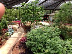 Butterfly House at Huntsville Botanical Garden