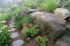 Through the rock garden