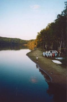 Arrowhead Provincial Park Family Trips, Family Travel, Outdoor Fun, Outdoor Camping, Huntsville Ontario, Ontario Parks, Cottage Rentals, Lake Camping, Closer To Nature