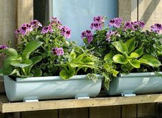 Idée récup pour le jardin. Transformer une gouttière en jardinière Permaculture, Garden, Recycling, Jardin, Plants, Recycled Garden, Zinc