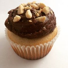 Peanut Butter & Chocolate Cupcake