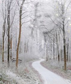 Mistress of the Winter Forest