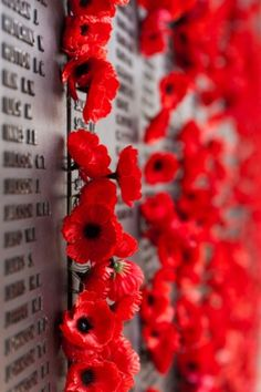 Happy Anzac Day - April 25: Remember Australia and New Zealand's fallen heroes! Lest we forget...