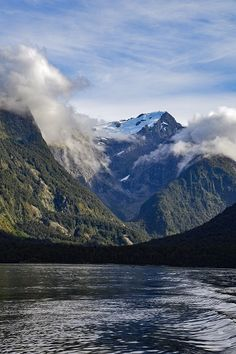 Glacier seen from Milford Sound cruise in NZ