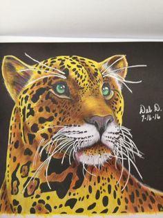 Jaguar 2 Debbie Hoskins D Adult ColoringColoring BooksJaguarVintage