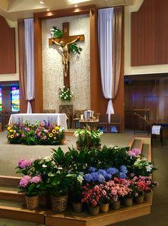Holy Spirit Catholic Church Easter 2016