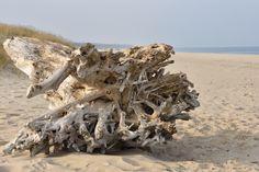 Sobieszewska plaża