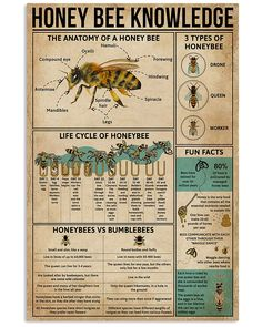 Buzz Bee, Bee Farm, Bee Friendly, Worm Composting, Save The Bees, Bee Happy, Bees Knees, Print Store, Bee Keeping