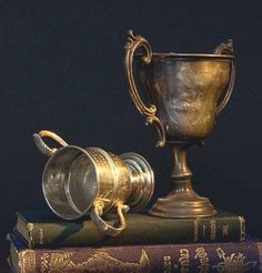 Golf Clubs Vintage Two Vintage Golf Loving Cup Trophies - Vintage Golf, Vintage Horse, Vintage Cups, Vintage Silver, Antique Silver, Vintage Books, Equestrian Decor, Equestrian Style, Old Trophies