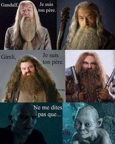 Harry Potter & le seigneur des anneaux