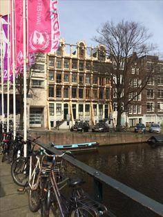 Amsterdam Travel, Fair Grounds, Street View, Fun, Image, Hilarious