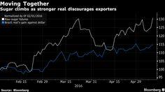 Sugar: prezzi in Wild Ride - Materie Prime - Commoditiestrading