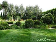 Organic Gardening Tips Key: 1542282089 Landscape Architecture Design, Garden Landscape Design, Sloped Backyard Landscaping, Modern Planting, Garden Storage Shed, Garden Canopy, Side Garden, Garden Borders, Garden Stones