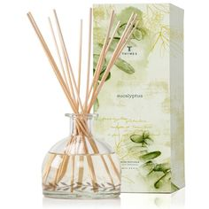Thymes - Eucalyptus Reed Diffuser