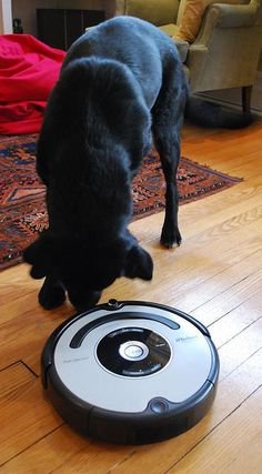 Get Clean Floors With Little Effort With The Irobot Roomba
