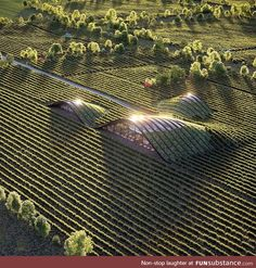What do you think about this place? The Vineyard Designed and visualized by X Ar… What do you think about this place? The Vineyard Designed and visualized by X Architecture Located in Kakheti, Georgia Texture Architecture, Architecture Durable, Art Et Architecture, Cultural Architecture, Futuristic Architecture, Sustainable Architecture, Residential Architecture, Architecture Colleges, Education Architecture
