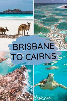 Brisbane To Cairns, Cairns Australia, Coast Australia, Western Australia, Roadtrip Australia, Australia Destinations, Australian Road Trip, New Zealand Travel Guide, East Coast Road Trip