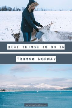 Norway Travel Guide, Europe Travel Guide, Travel Guides, Travel Destinations, Winter Family Vacations, See The Northern Lights, Tromso, Christmas Travel, Blogger Tips