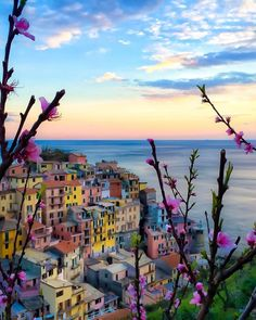 Cinque Terre, Italy   Doounia