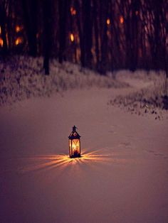 Lantern light in winter Winter Szenen, I Love Winter, Winter Magic, Winter Christmas, Winter Walk, Winter Wonderland, I Love Snow, Snow Scenes, Snow And Ice
