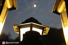 🌙 Cuando un dedo apunta a la luna, el necio mira el dedo.-Proverbio chino 🌙 💚 Buenas noches desde nuestro jardín Instagramers, mañana más 💚 #luna #landscape #night #noche #fotografia #jardin #green #garden #goodnight #buenasnoches #instanight #instanature #naturaleza #canon #reflex #foto #photo