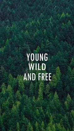 Wallpaper Iphone - Young Wild And Free Forest Pattern iPhone 6 Plus HD Wallpaper , Desktop Wallpaper Design, Wallpaper For Your Phone, Tumblr Wallpaper, Mobile Wallpaper, Wallpaper Quotes, Forest Wallpaper Iphone, Qhd Wallpaper, Iphone 6 Plus Wallpaper, Hd Wallpaper Android