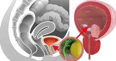 Cum sa cureti vezica urinara de infecție Good To Know, Household, Plates, Orice, Tableware, Medicine, Licence Plates, Dishes, Dinnerware