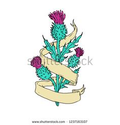 Illustration about Color drawing sketch style illustration of a Scottish or Scotch thistle with ribbon or scroll wrap around on isolated white background. Illustration of hatch, scottish, line - 132215267 Plant Vector, Scottish Thistle, Find Color, Colorful Drawings, Ribbon Colors, Drawing Sketches, Illustrations Posters, Graphic Art, Scotch