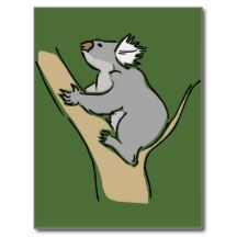 Koala bear 18b postcard