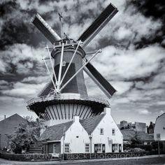 Can't beat a good windmill!  Windlust, Wassenaar