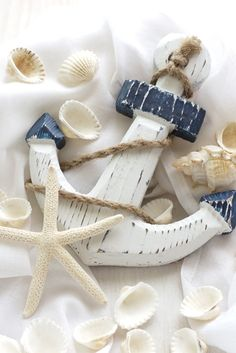 summer, marine, shells
