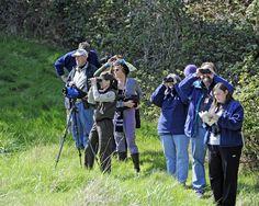 BLOG: 'Wat doe jij liever? vogeltjes kijken of adventure racen?'