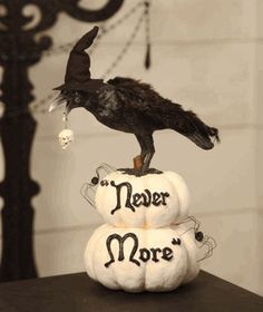"Raven ""Never More"""