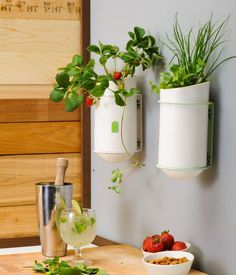 In This Article We Will Describe Kitchen Wall Decor. Part 80