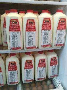 Fleckvieh Milk | Primrose Farms