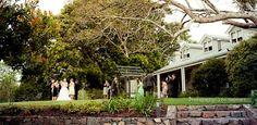 Weddings in Montville - Spicers Clovelly Estate: One of my beautiful weddings at Clovelly Estate!