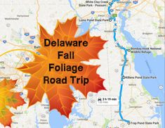 Take+This+Gorgeous+Fall+Foliage+Road+Trip+To+See+Delaware+Like+Never+Before
