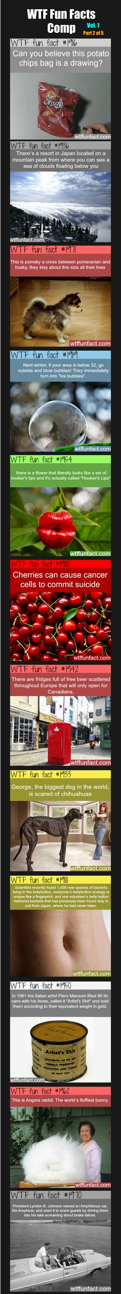 WTF Fun Facts Comp Vol. 1 Part 2