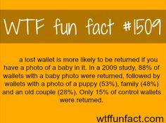 WTF Fun Fact# 1509 A lost wallet is most likely.....