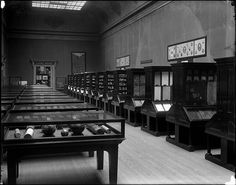 Economic Geology by The Field Museum Library, via Flickr