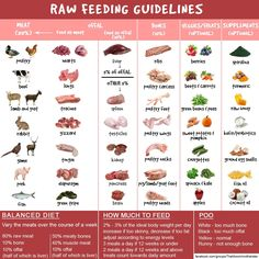 Download your free raw feeding cheatsheet perfect for beginners and raw dog food guidance chart forumfinder Gallery
