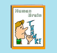 how the human brain works essay writer
